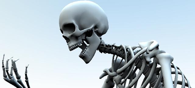 頭蓋骨について|ガイコツの頭