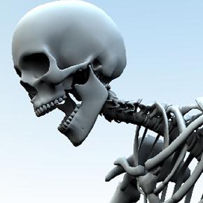 骨のはなし その10 「頭蓋骨が動く!?」