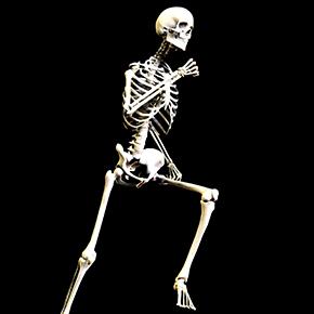 骨のはなし その12 「骨と運動 運動は骨にイイ!」