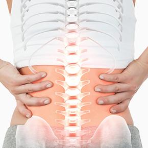 椎間板ヘルニア|腰を支える人とその腰の中の背骨の絵