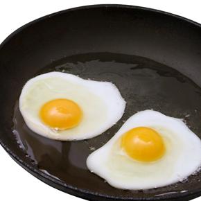 プロテイン PART7   卵は理想の食品!