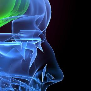 背骨 PART3 |背骨と内臓のつながり