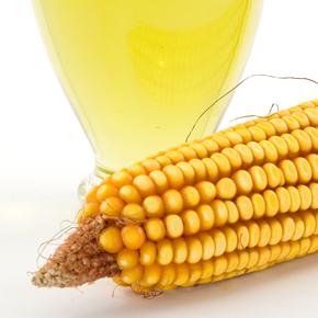 脂質 PART3  リノール酸摂り過ぎが問題を作る!?