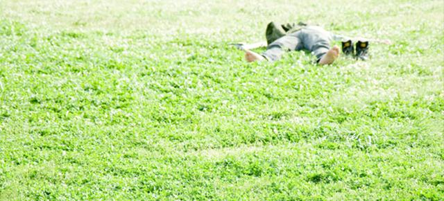 生活習慣病|芝生で大の字で寝るサラリーマン