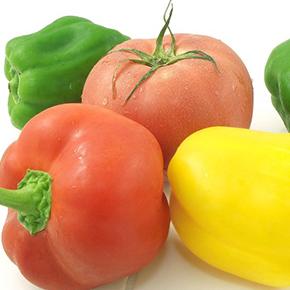 夏こそ、おいしい野菜を食べる!