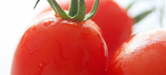 ガンや動脈硬化を予防|トマト