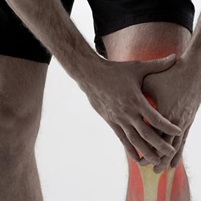 骨のはなし その2 「関節 jointについて」